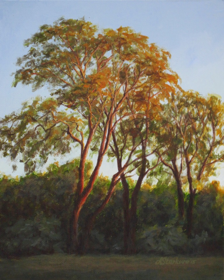 """Light of summer sunset""<span style=""font-size:30px; color: #c30000;"">•</span>"