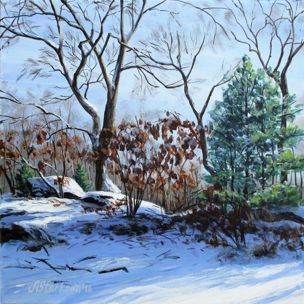 """Winter Morning"""